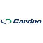 Cardno PNG Ltd logo thumbnail