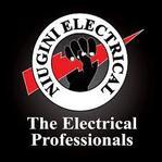 Niugini Electrical Co. Ltd logo thumbnail